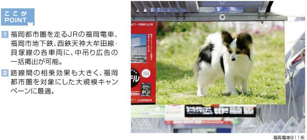 福岡ネット21(中吊り)